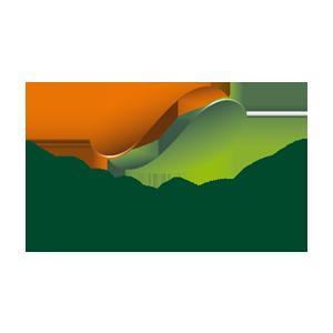 allbion